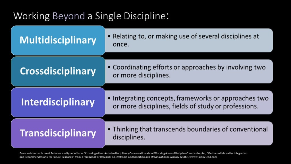 Working Beyond a Single Discipline